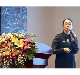2018中陶产品展及2018中陶装备材料展新闻发布会举行